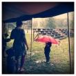Bra med paraply